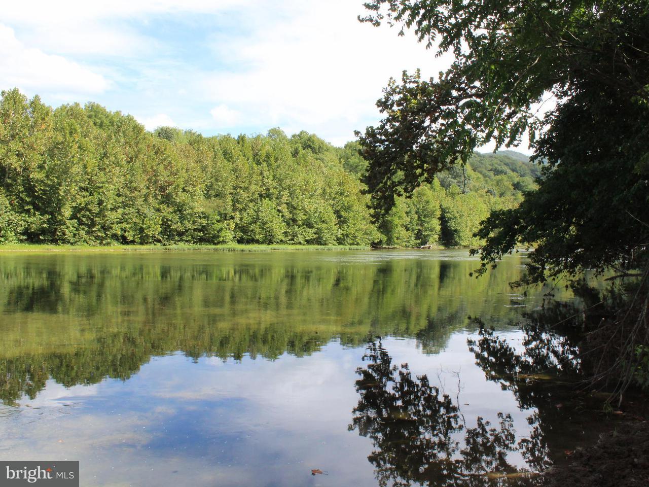 土地 為 出售 在 OLD FARM ROAD OLD FARM ROAD Shenandoah, 弗吉尼亞州 22849 美國