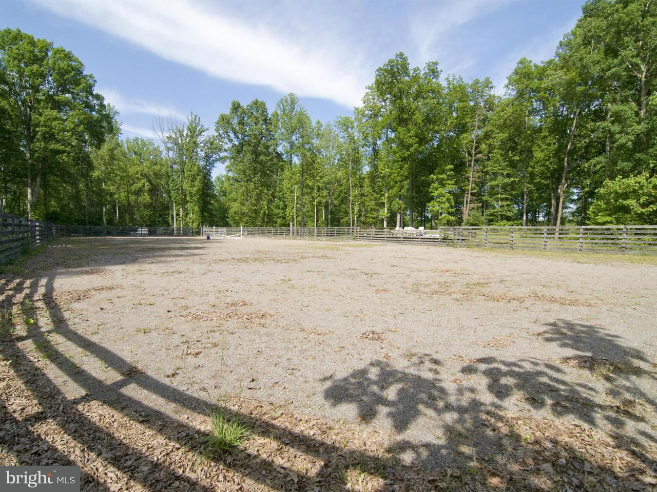 Additional photo for property listing at 1679 NORTH POES Road 1679 NORTH POES Road Flint Hill, 弗吉尼亞州 22627 美國