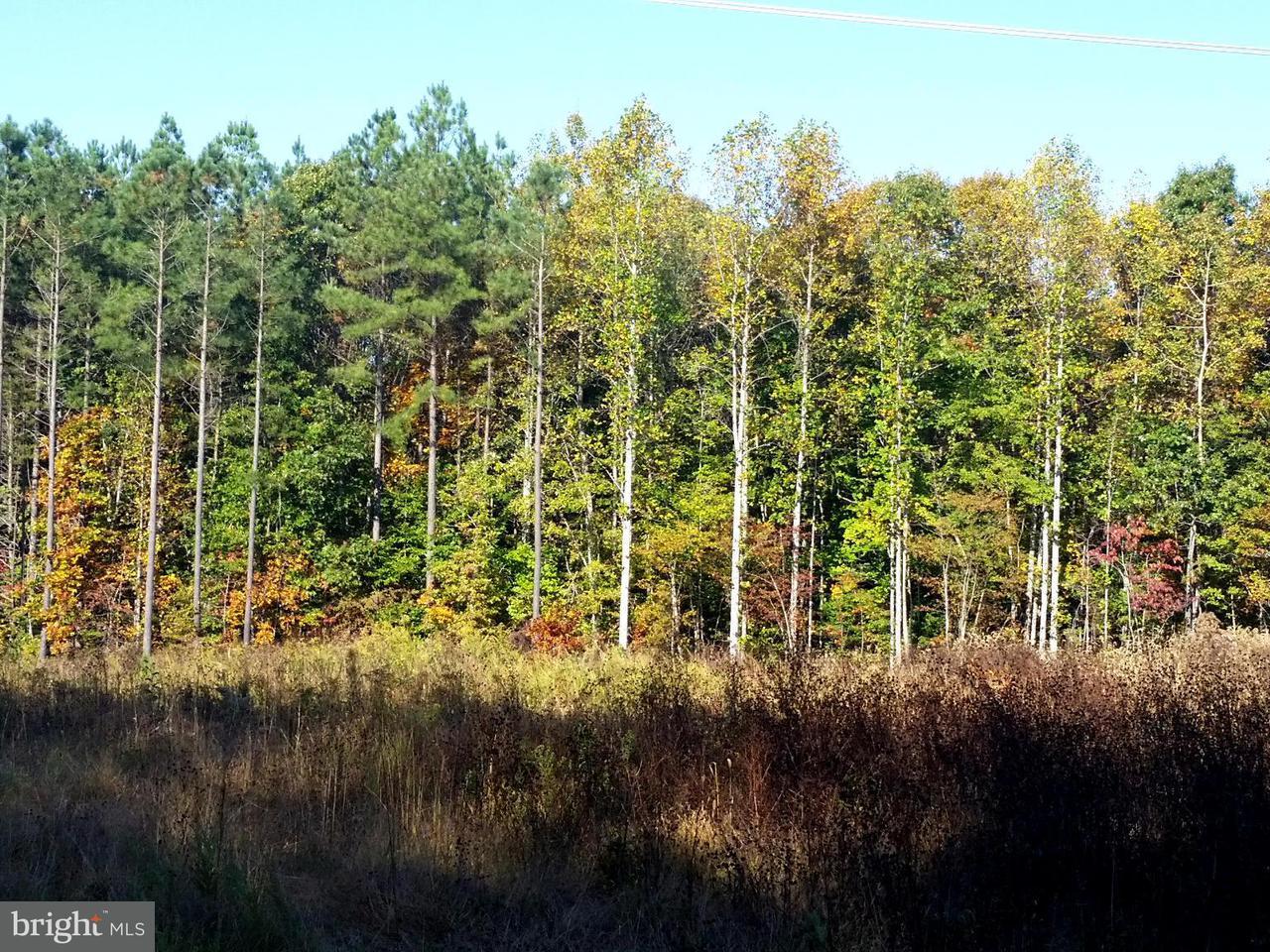 Land for Sale at Bristersburg Rd Midland, Virginia 22728 United States