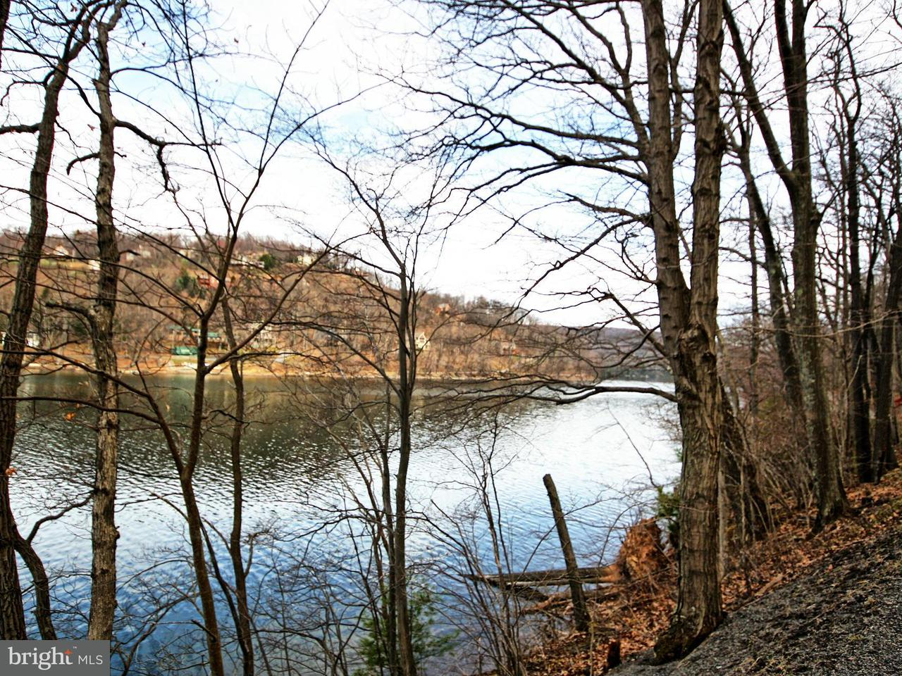 Land for Sale at STATE PARK Road STATE PARK Road Swanton, Maryland 21561 United States