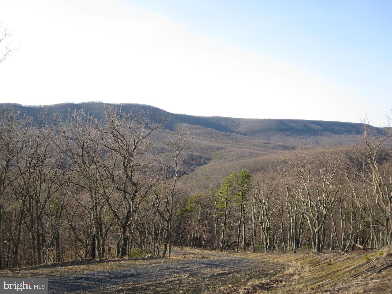 Land for Sale at 23 Boulder Dr Mathias, West Virginia 26812 United States