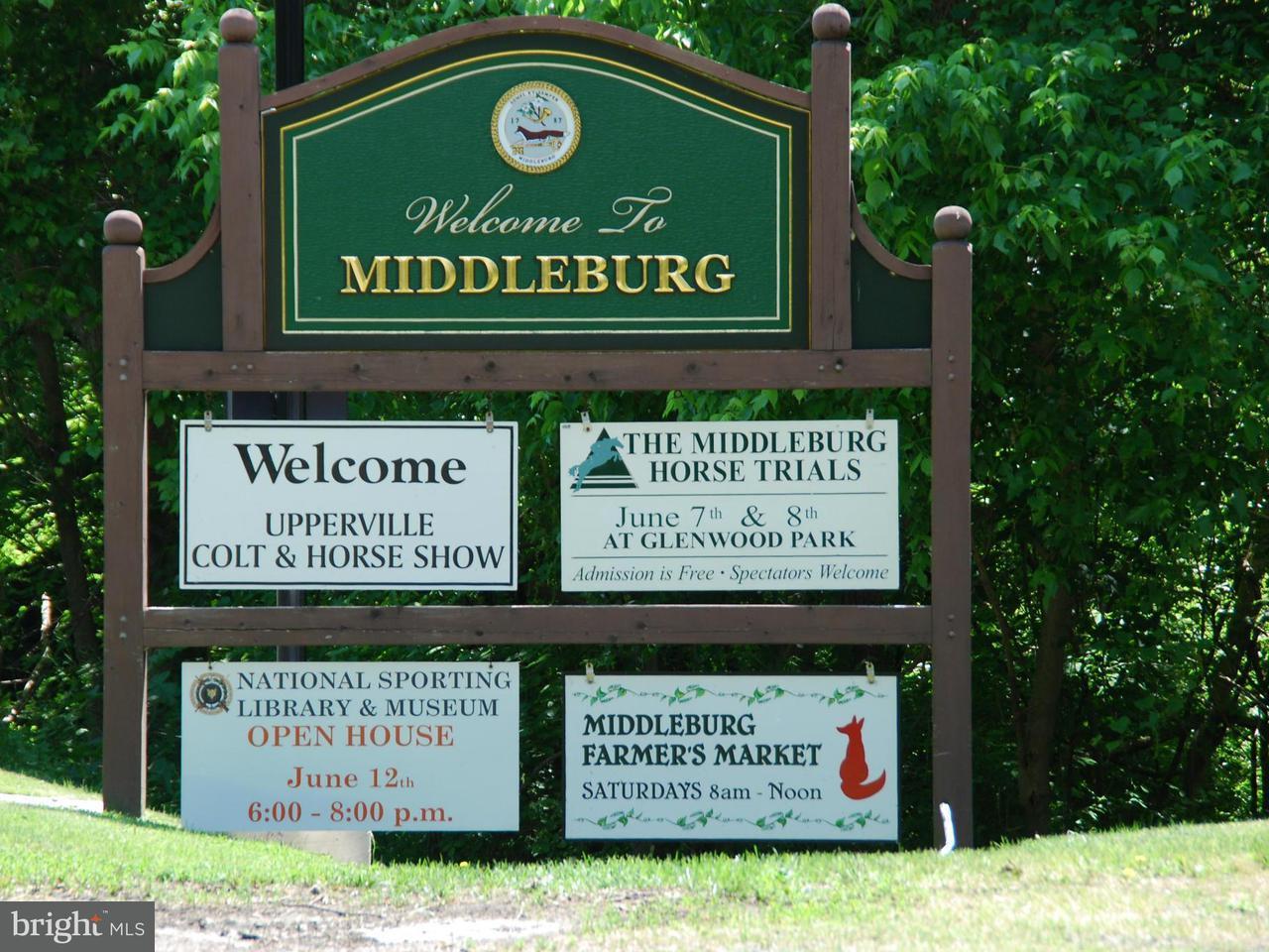 토지 용 매매 에 6241 John Mosby Hwy 6241 John Mosby Hwy Middleburg, 버지니아 20117 미국