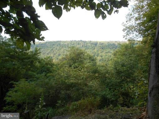 土地 为 销售 在 KUHN MINE Road KUHN MINE Road Mount Storm, 西弗吉尼亚州 26739 美国