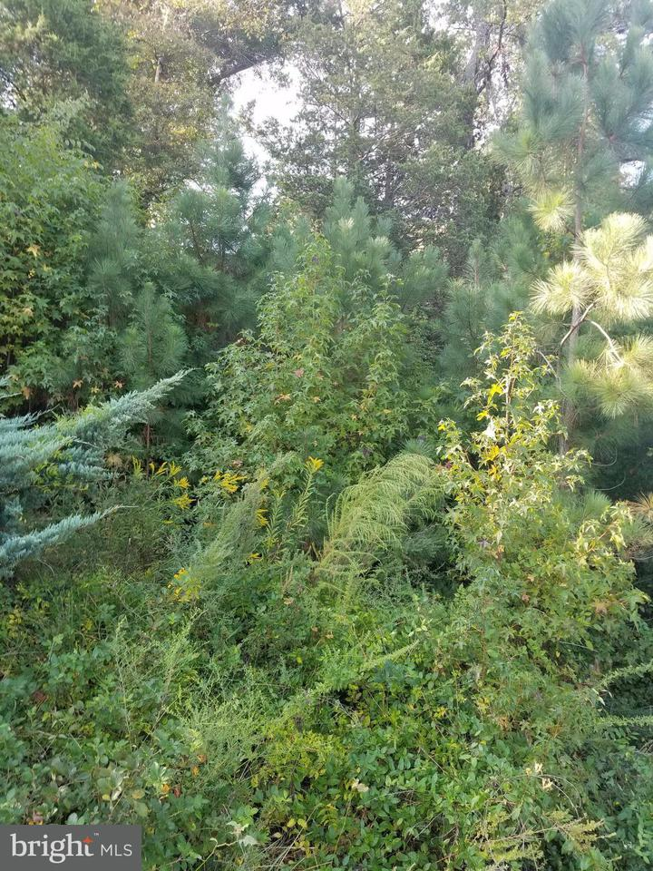 Land for Sale at 0 Dawn Blvd. Hanover, Virginia 23069 United States