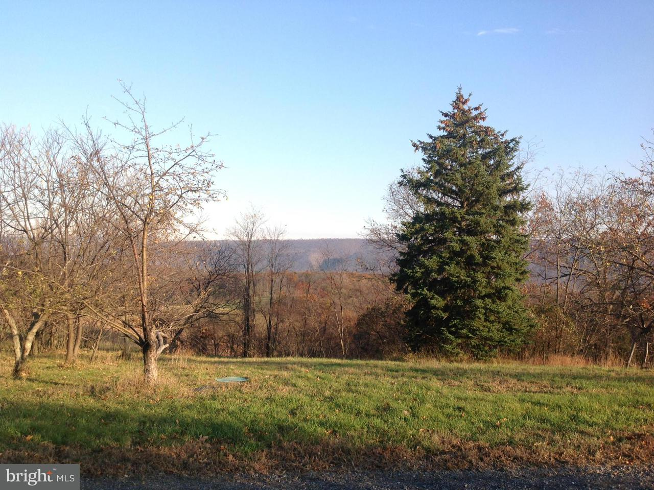 Additional photo for property listing at 2957 ED WELCH Road 2957 ED WELCH Road Burlington, West Virginia 26710 Estados Unidos