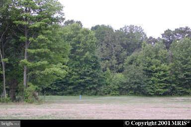 土地 為 出售 在 SWAN CREEK Road SWAN CREEK Road Rock Hall, 馬里蘭州 21661 美國
