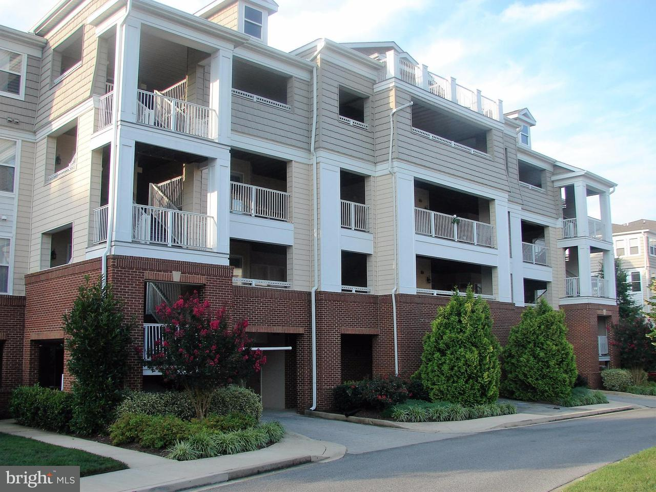 Condominium for Rent at 914 Bean Rd #914 Dowell, Maryland 20629 United States