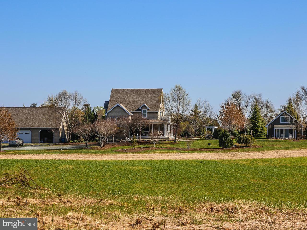 农场 为 销售 在 13735 EAGLES NEST FARM Lane 13735 EAGLES NEST FARM Lane Betterton, 马里兰州 21610 美国