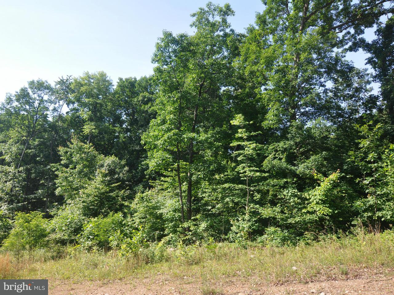 Additional photo for property listing at Lot 9 Falconwood Dr  Bloomery, West Virginia 26817 United States