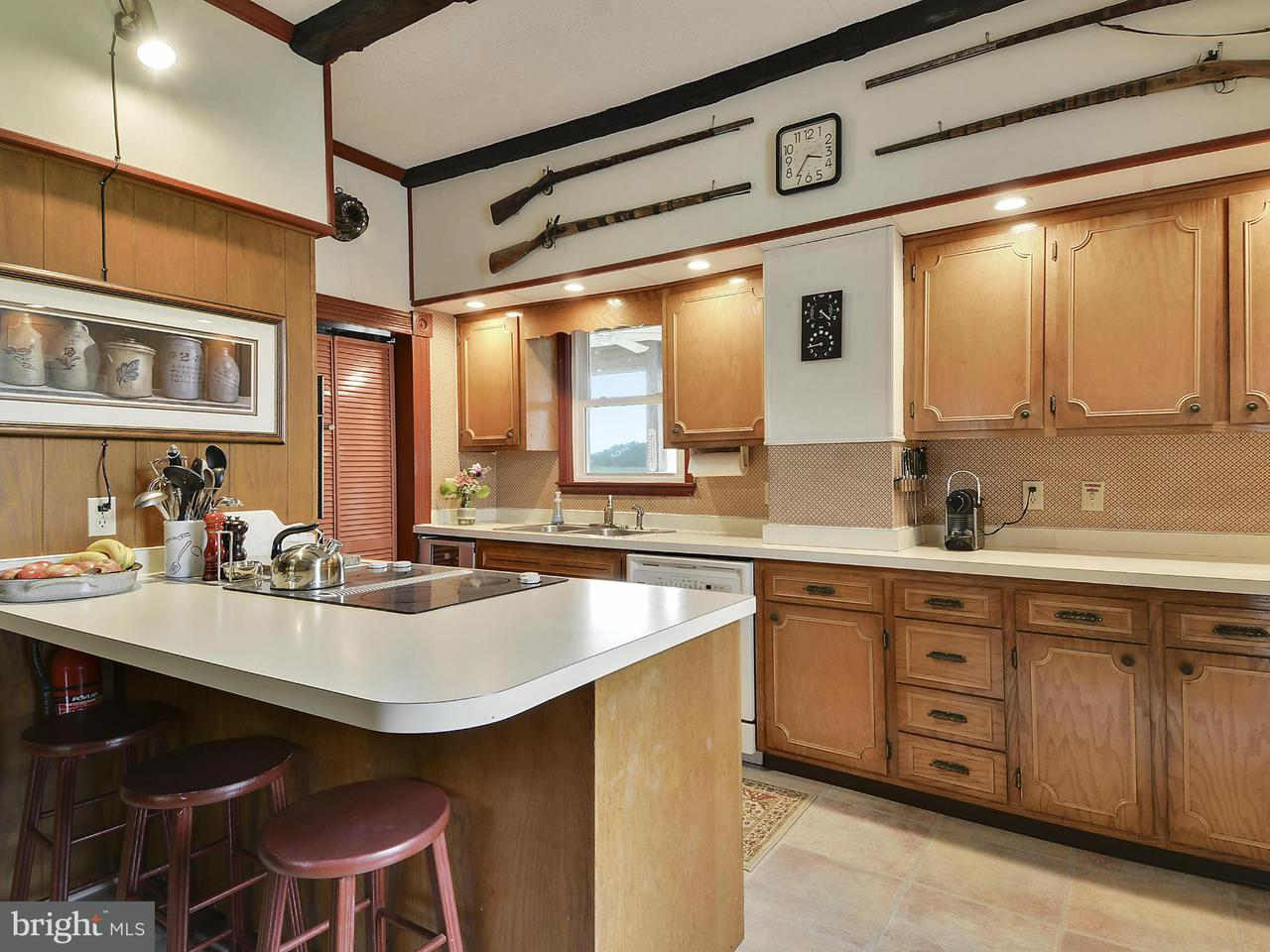 Additional photo for property listing at 712 Hills Point Road 712 Hills Point Road Cambridge, Maryland 21613 Verenigde Staten
