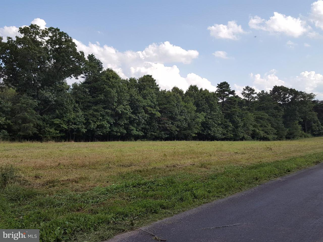 Land for Sale at Lot 2 Turkey Farm Road Little Orleans, Maryland 21766 United States