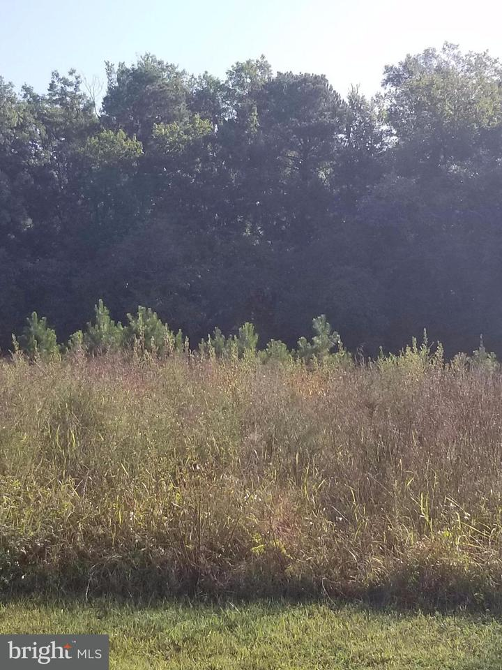 Land for Sale at 13315 Meadow Farm Rd. Hanover, Virginia 23069 United States
