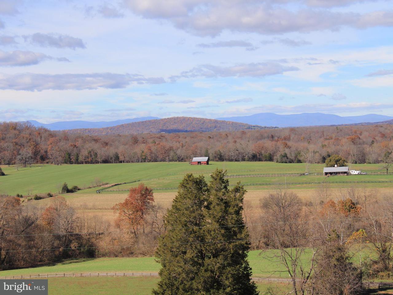 Farm for Sale at 21250 RIVER Road 21250 RIVER Road Rapidan, Virginia 22733 United States