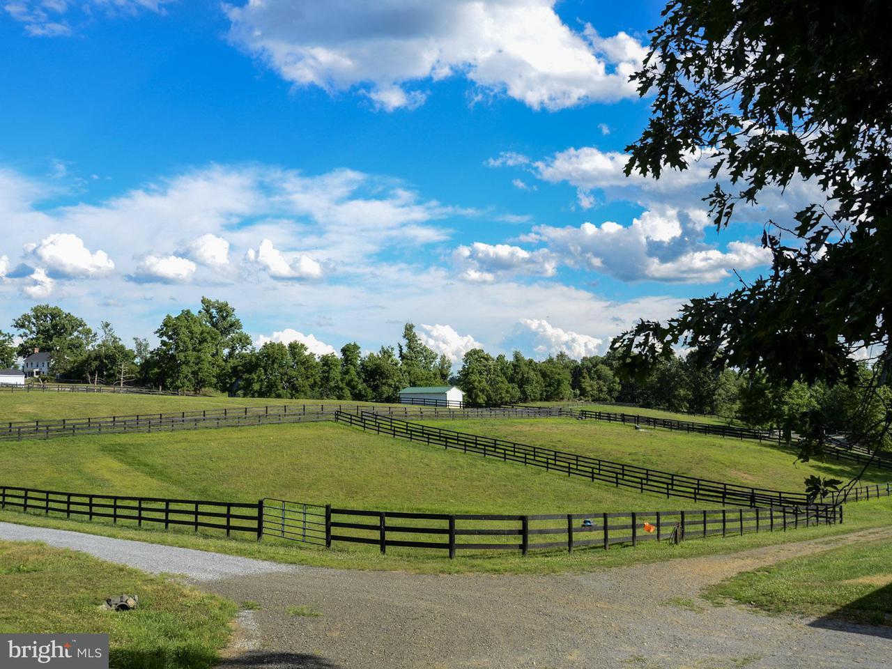 Частный односемейный дом для того Продажа на 35469 MILLVILLE Road 35469 MILLVILLE Road Middleburg, Виргиния 20117 Соединенные Штаты