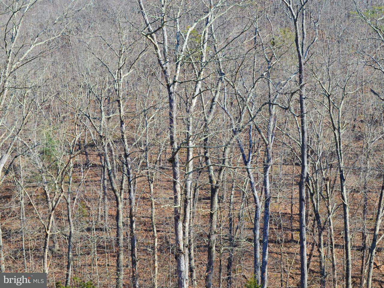Additional photo for property listing at Lot 28 Comforter Ln  Middletown, Virginia 22645 United States