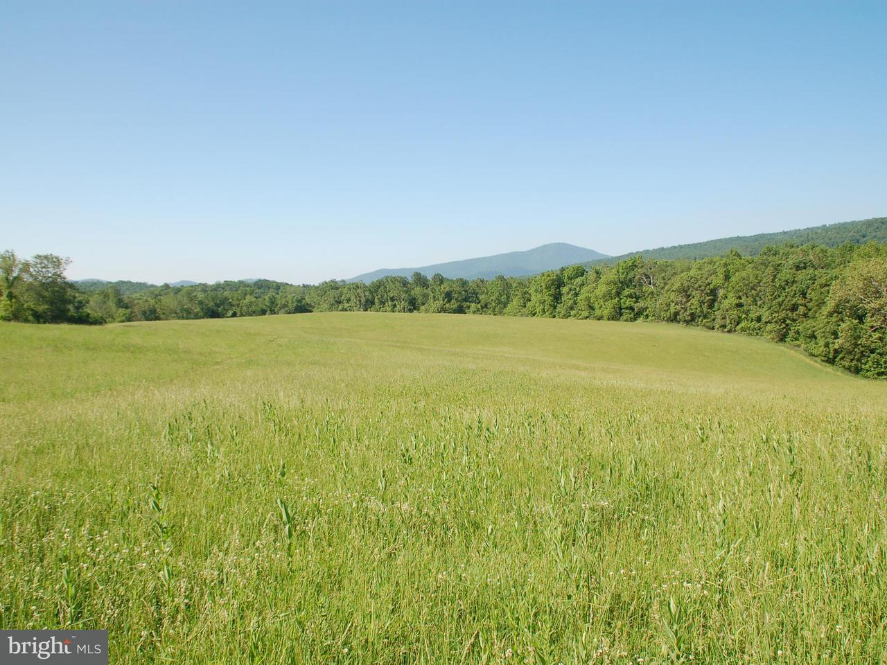 Land for Sale at 14282 Hume Road 14282 Hume Road Hume, Virginia 22639 United States