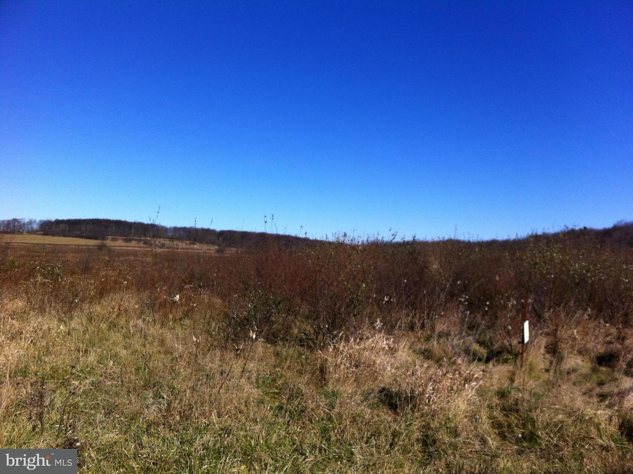 土地 为 销售 在 BISMARK Road BISMARK Road Mount Storm, 西弗吉尼亚州 26739 美国