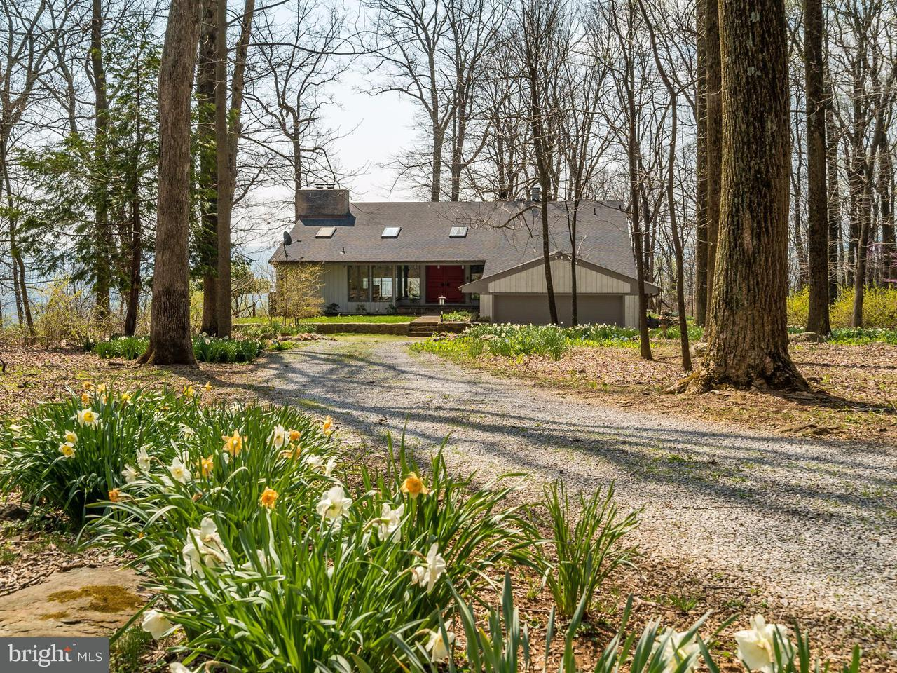 Single Family Home for Sale at 20634 BLUERIDGE MOUNTAIN Road 20634 BLUERIDGE MOUNTAIN Road Paris, Virginia 20130 United States