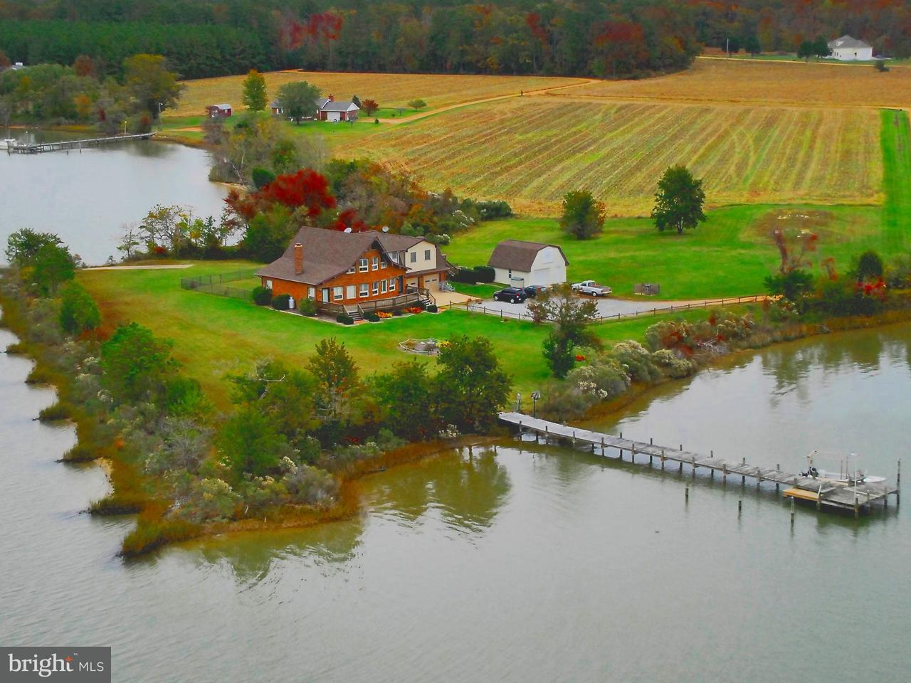 Single Family for Sale at 50166 Dove Cove Rd Dameron, Maryland 20628 United States