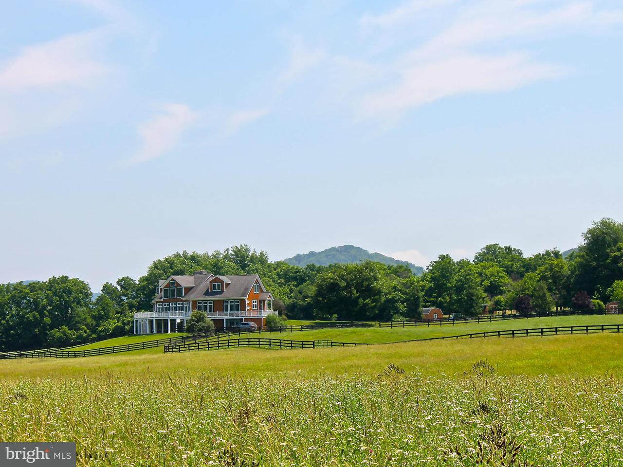 Single Family for Sale at 272 River Boat Dr Front Royal, Virginia 22630 United States