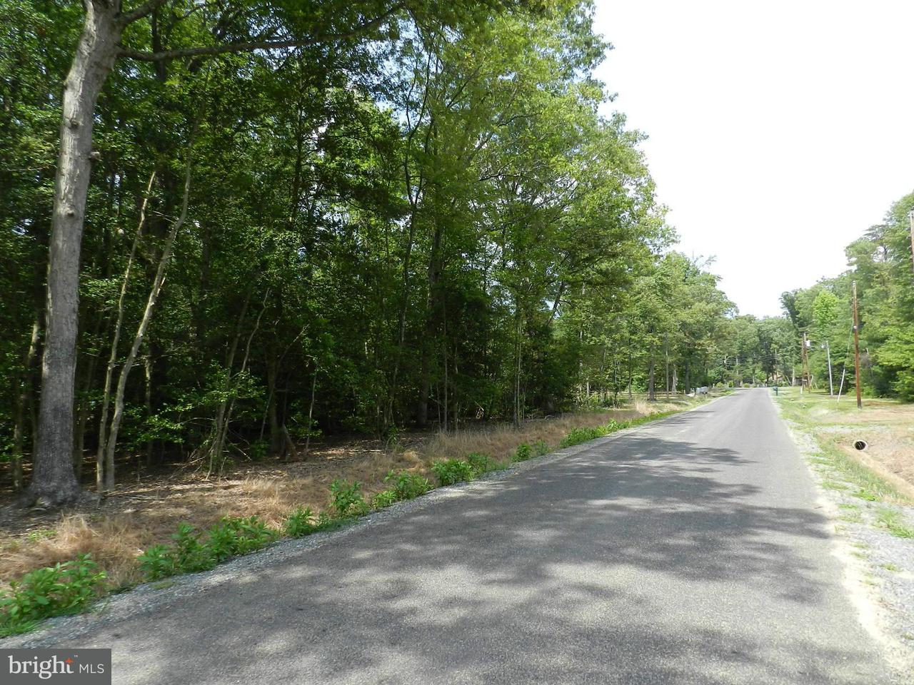 Additional photo for property listing at Placid Point Rd.  Colonial Beach, Virginia 22443 United States