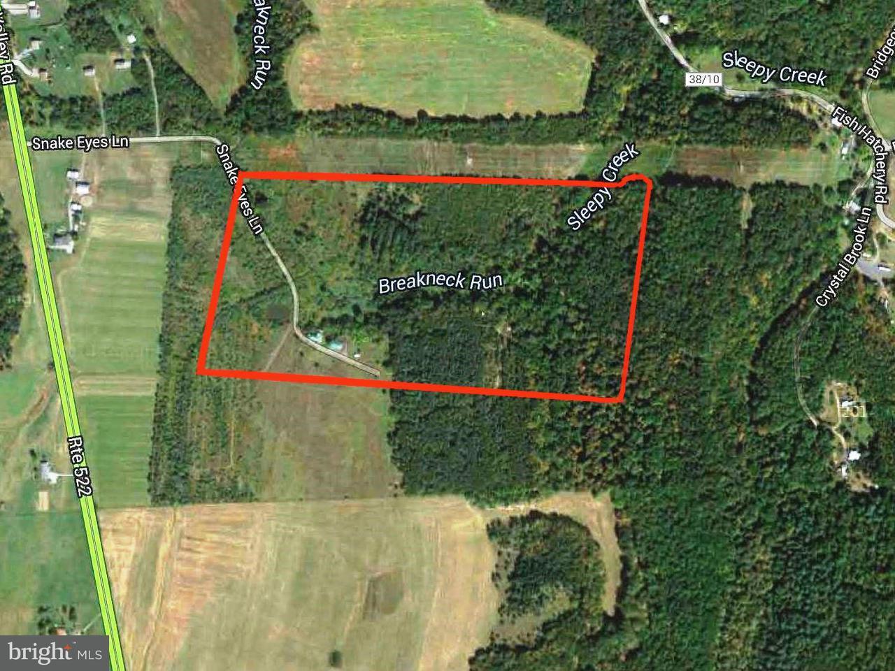 土地,用地 为 销售 在 US HWY US HWY 伯克利斯普林斯, 西弗吉尼亚州 25411 美国