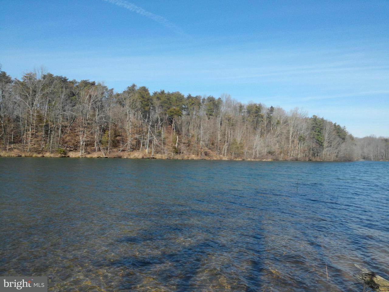 土地,用地 为 销售 在 2933 MINOR Road 2933 MINOR Road Bumpass, 弗吉尼亚州 23024 美国