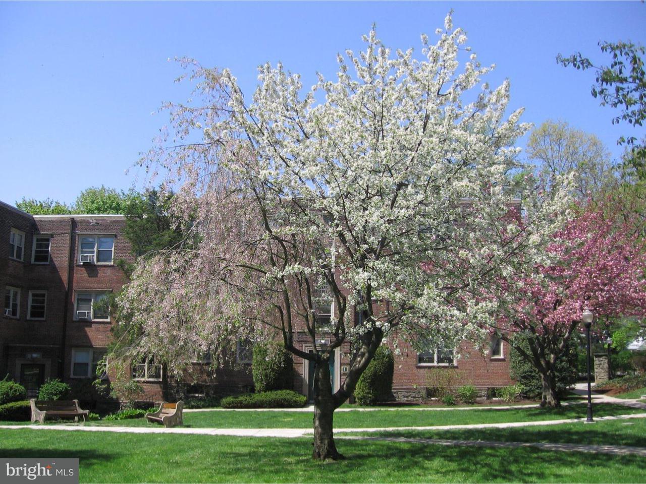 Maison unifamiliale pour l à louer à 214 PRICE AVE #C24 Narberth, Pennsylvanie 19072 États-Unis