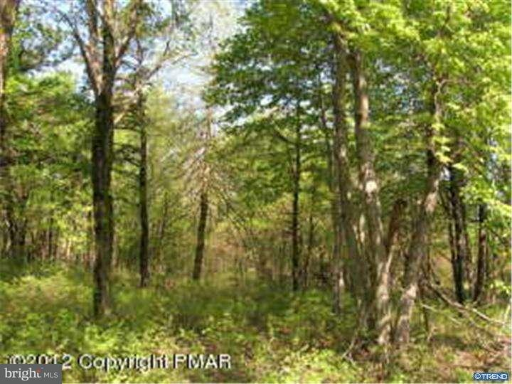 Additional photo for property listing at STONY MTN  Jim Thorpe, Pennsylvanie 18229 États-Unis