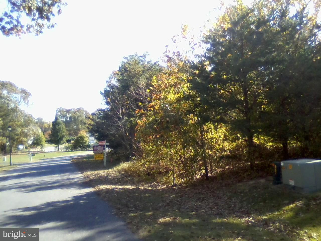 獨棟家庭住宅 為 出售 在 8207 ATHENA Lane 8207 ATHENA Lane Severn, 馬里蘭州 21144 美國