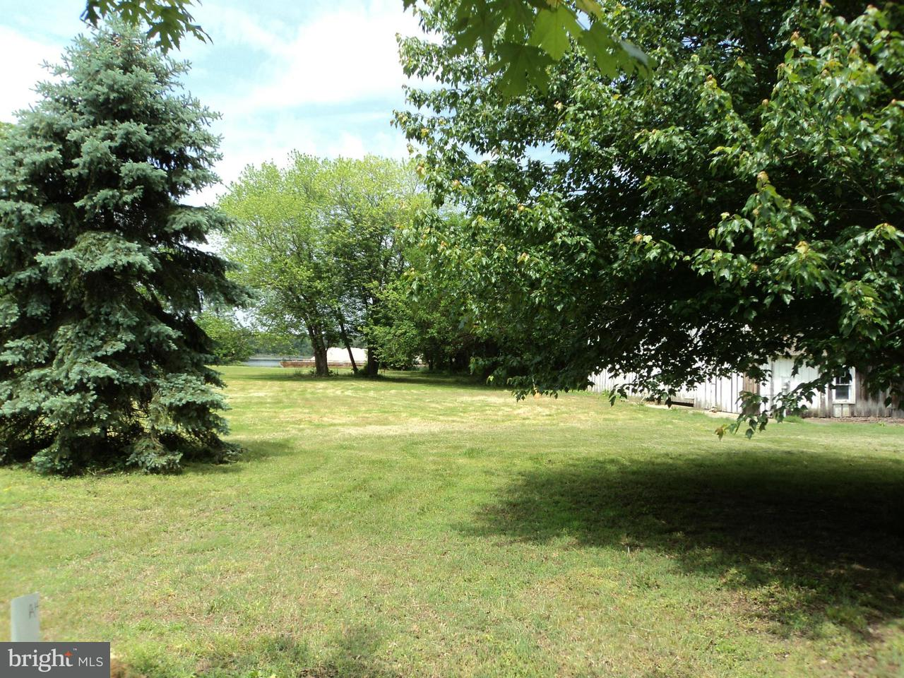 Additional photo for property listing at 27170 ENNISKILLEN Road 27170 ENNISKILLEN Road 伊斯顿, 马里兰州 21601 美国