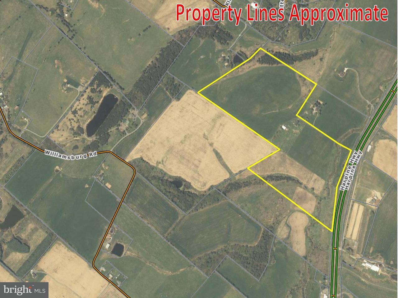土地 のために 売買 アット HARPINE HWY HARPINE HWY Linville, バージニア 22834 アメリカ合衆国