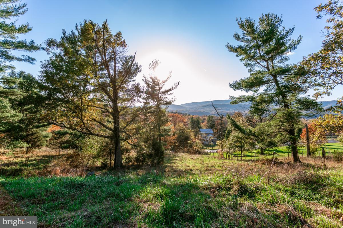 Land for Sale at 0 Lower Cove Run Rd Mathias, West Virginia 26812 United States