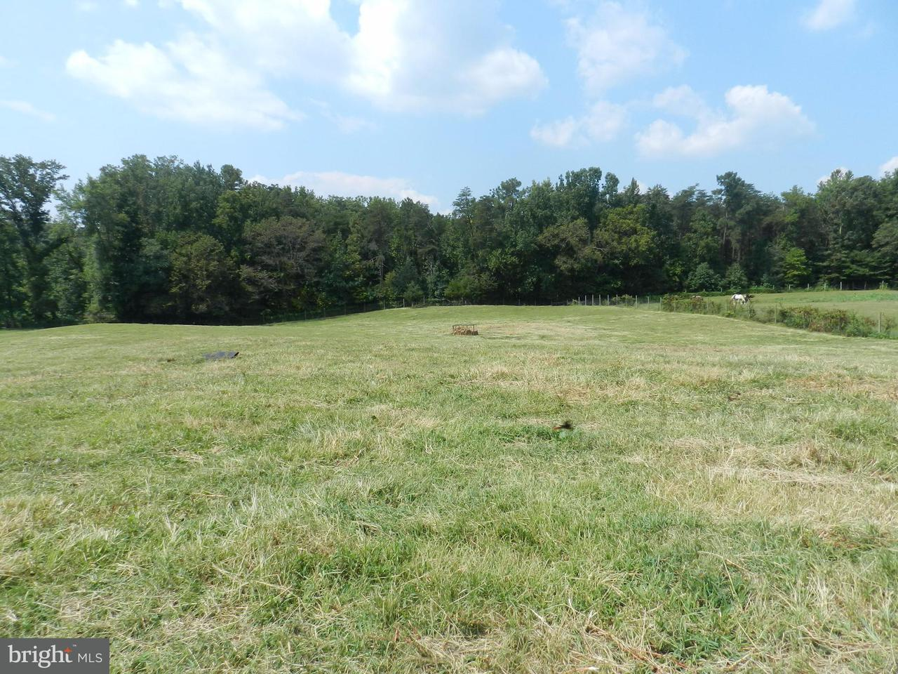 Additional photo for property listing at 9315 PAIGE Road 9315 PAIGE Road Woodford, Virginia 22580 Verenigde Staten