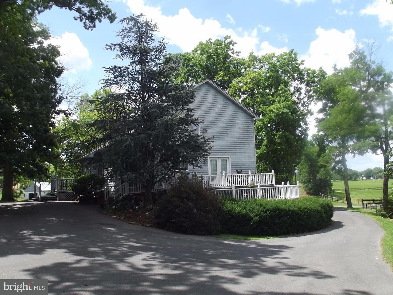 Farm / Hof für Verkauf beim 303 WILLINGHAM Road 303 WILLINGHAM Road Charles Town, West Virginia 25414 Vereinigte Staaten