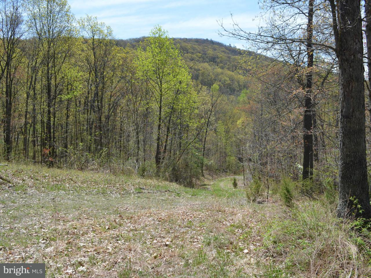 Additional photo for property listing at Rt 211  New Market, Virginia 22844 United States