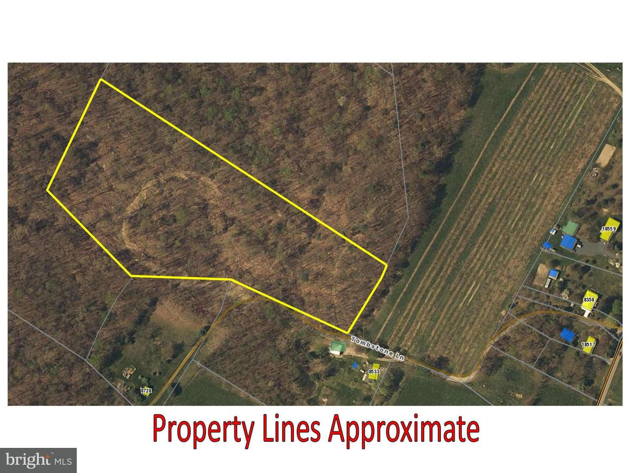 Land for Sale at 0 Tombstone Ln Timberville, Virginia 22853 United States