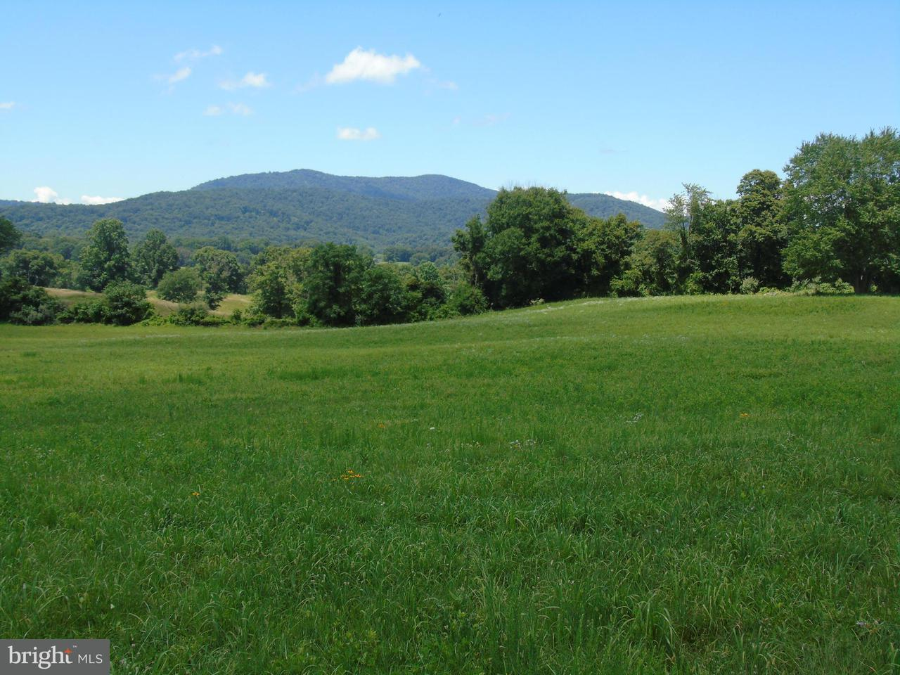 Additional photo for property listing at 11402 Hume Road 11402 Hume Road Hume, Virginia 22639 Estados Unidos