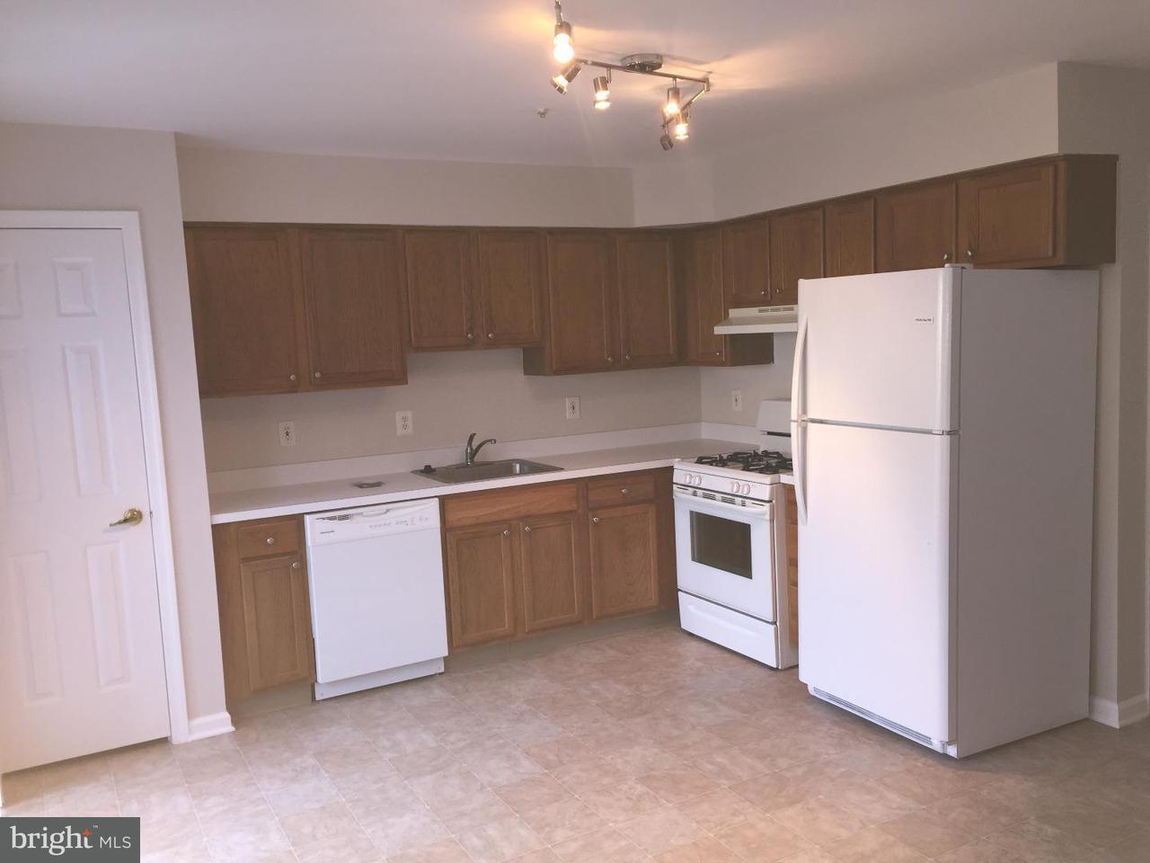 联栋屋 为 出租 在 145 BUCKINGHAM WAY Mount Laurel, 新泽西州 08054 美国