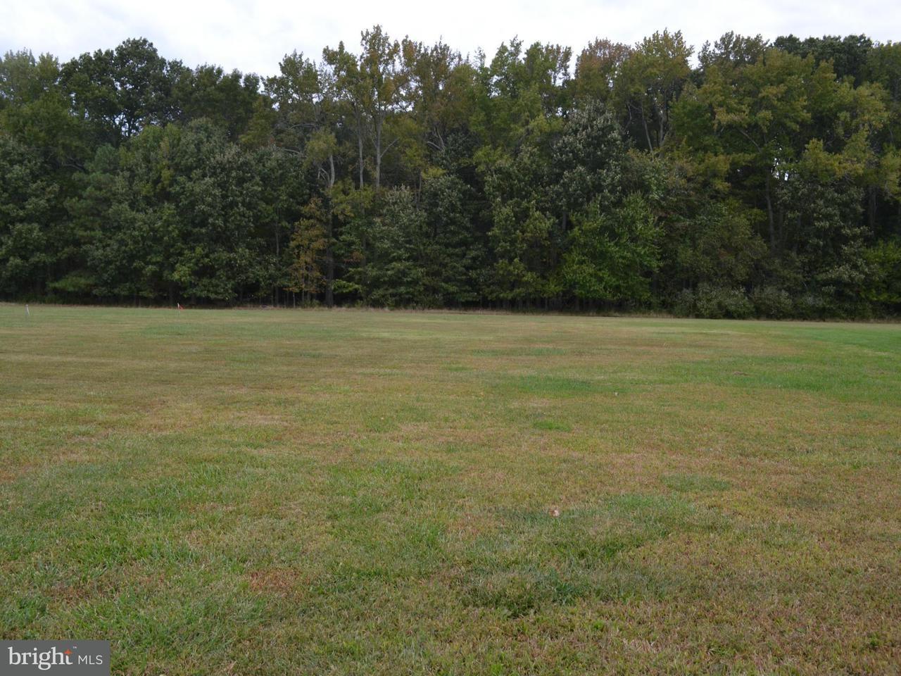 Land for Sale at 7112 Edmond Ave Easton, Maryland 21601 United States