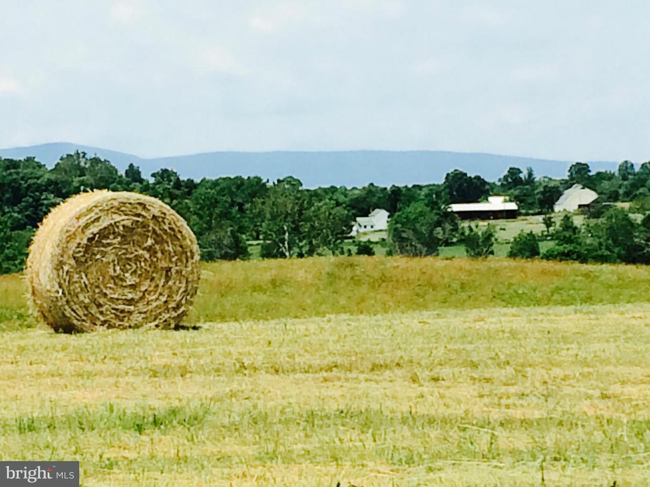 농장 용 매매 에 11069 COLLINE Drive 11069 COLLINE Drive Marshall, 버지니아 20115 미국