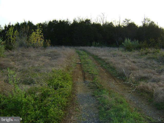 Land for Sale at RADIO STATION Road RADIO STATION Road Strasburg, Virginia 22657 United States
