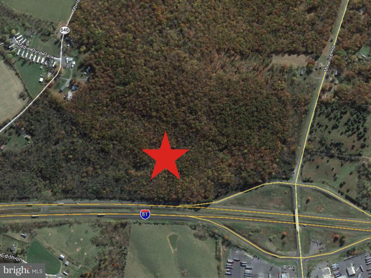 Mount Olive Road Toms Brook, VA 22660