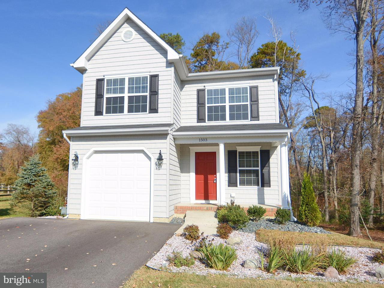 1503  Lincoln Severn, MD 21144